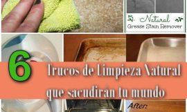6 Trucos de Limpieza Natural que sacudirán tu mundo