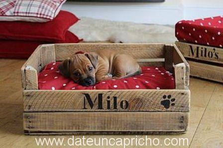 Cama para las mascotas con caj n de madera date un capricho - Camas para perros de madera ...
