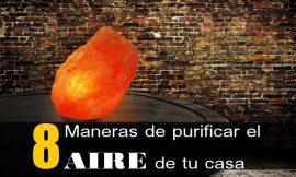 8 Maneras de purificar el aire de tu casa