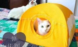 Como hacer una casita para gatos con una camiseta vieja