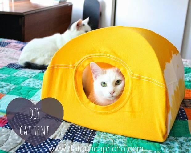 Photo of Como hacer una casita para gatos con una camiseta vieja