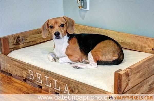 231976_pallet-dog-bed-4