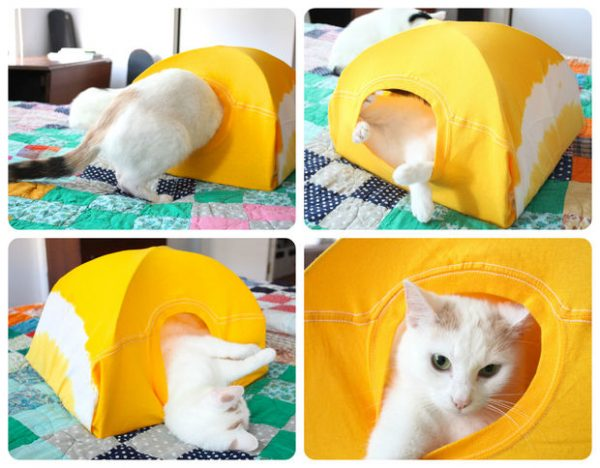 DIY-Cat-Tent-from-an-Old-T-Shirt-16