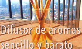 Como hacer un difusor de aromas barato y fácil