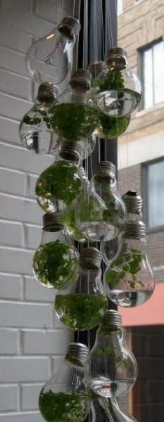 ideas-para-reciclar-bombillas-de-luz-13