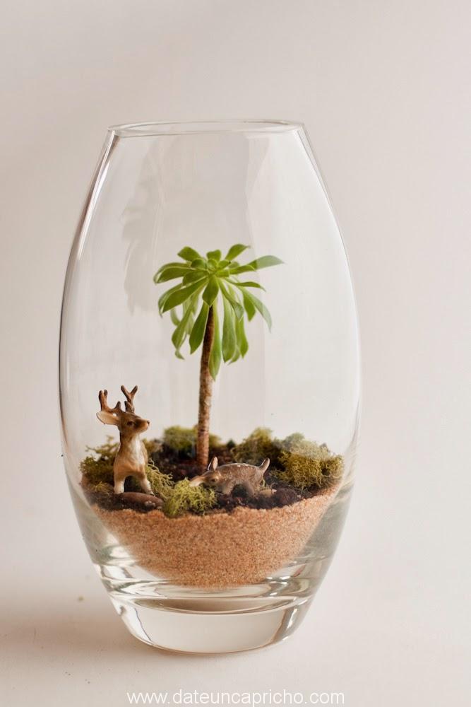 Photo of Terrario con diorama fácil de hacer