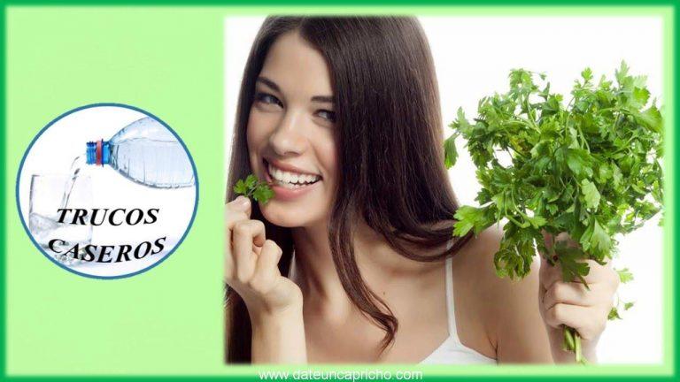 Los increibles beneficios y propiedades curativas del perejil para la salud