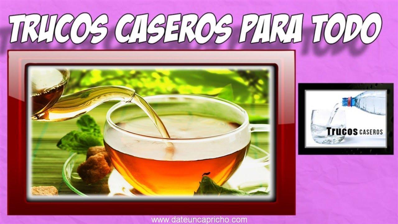 Photo of Te verde para perder grasa del vientre – Dieta plantas medicinales