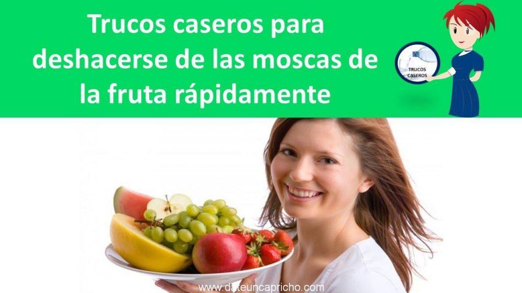 trucos caseros para deshacerse de las moscas de la fruta rapidamente