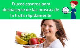 Trucos caseros para deshacerse de las moscas de la fruta rápidamente