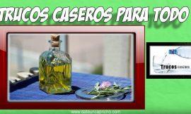 Como hacer alcohol de romero en casa – Para que se utiliza el alcohol de romero