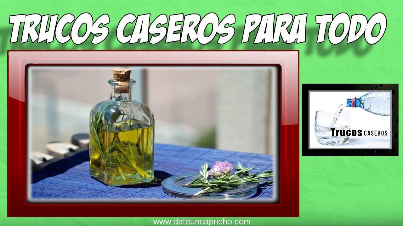 Photo of Como hacer alcohol de romero en casa – Para que se utiliza el alcohol de romero