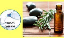 Uso y propiedades del aceite esencial del arbol del te.