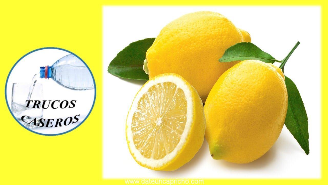 Propiedades y beneficios del limon para nuestro organismo – Salud natural.
